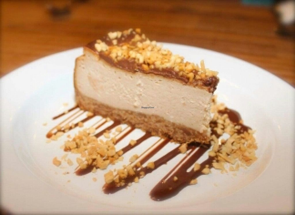 """Photo of Bonta Vera  by <a href=""""/members/profile/JohnTheVegan"""">JohnTheVegan</a> <br/>Peanut Butter Cheesecake <br/> April 10, 2016  - <a href='/contact/abuse/image/69201/143848'>Report</a>"""