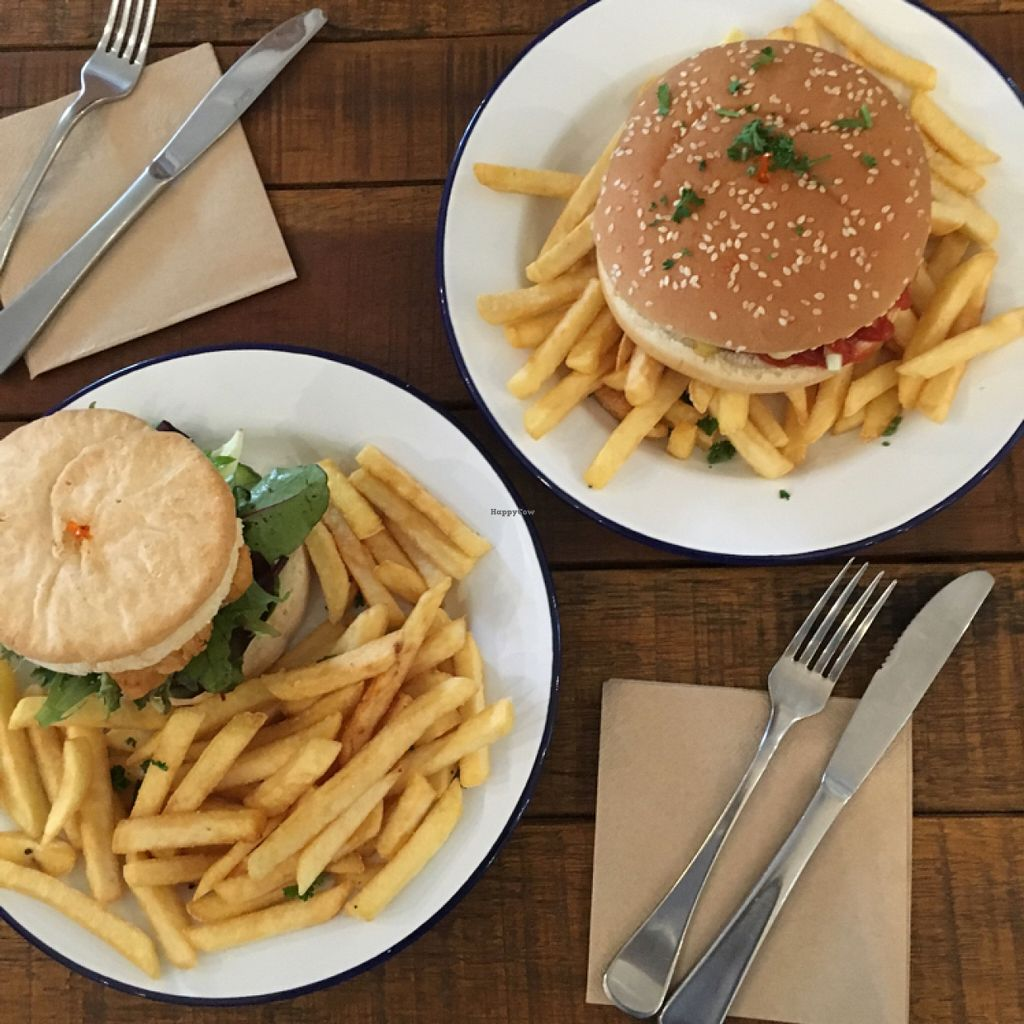 """Photo of Bonta Vera  by <a href=""""/members/profile/Sammybrack"""">Sammybrack</a> <br/>double cheeseburger and fishless on GF bun <br/> June 4, 2016  - <a href='/contact/abuse/image/69201/152246'>Report</a>"""