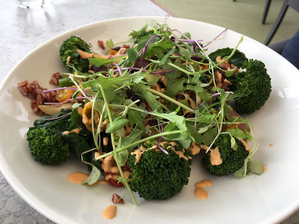 """Photo of Thomas's Bach  by <a href=""""/members/profile/AimeeS"""">AimeeS</a> <br/>Broccolini & wild rice salad <br/> May 15, 2017  - <a href='/contact/abuse/image/69262/258888'>Report</a>"""