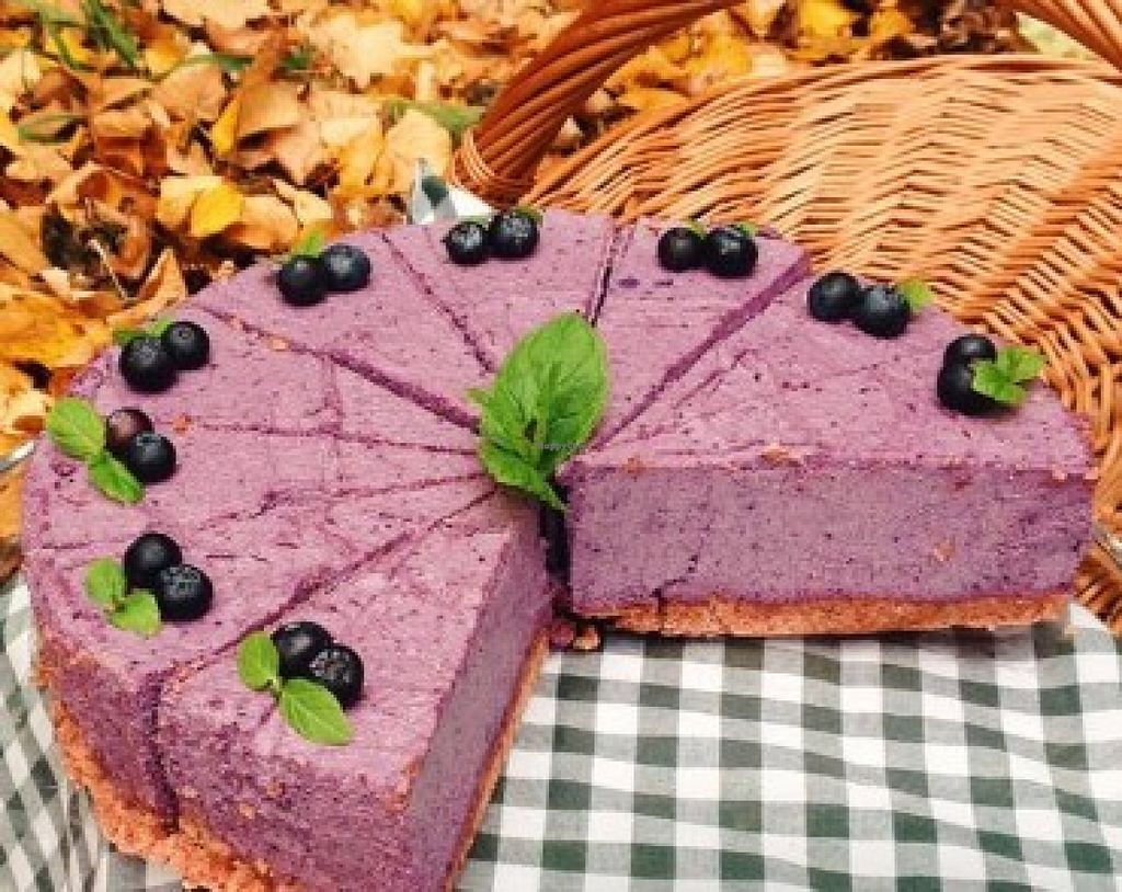 "Photo of Laba  by <a href=""/members/profile/community"">community</a> <br/>vegan blueberry pie  <br/> February 17, 2016  - <a href='/contact/abuse/image/69281/136673'>Report</a>"