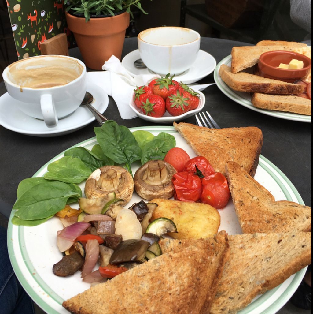 """Photo of Fox Cafe  by <a href=""""/members/profile/Spaghetti_monster"""">Spaghetti_monster</a> <br/>vegan breakfast <br/> June 18, 2016  - <a href='/contact/abuse/image/69299/154576'>Report</a>"""
