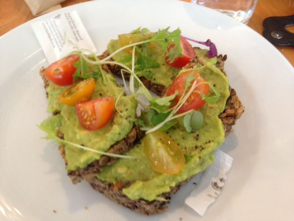 "Photo of Big Sur  by <a href=""/members/profile/Yolanda"">Yolanda</a> <br/>Avocado on toast <br/> February 6, 2016  - <a href='/contact/abuse/image/69313/135288'>Report</a>"