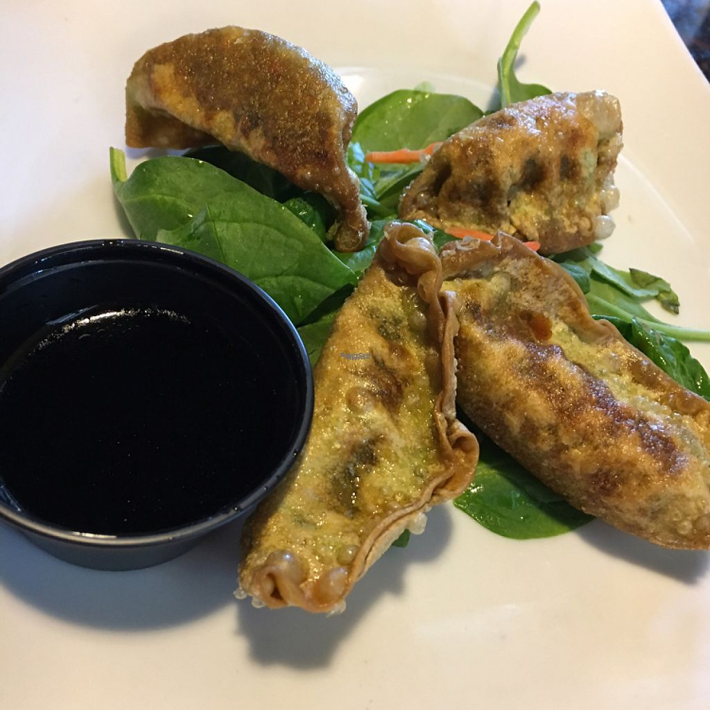"""Photo of Mama Fu's Asian House  by <a href=""""/members/profile/KWdaddio"""">KWdaddio</a> <br/>vegetable potstickers crispy <br/> April 24, 2017  - <a href='/contact/abuse/image/69317/251781'>Report</a>"""