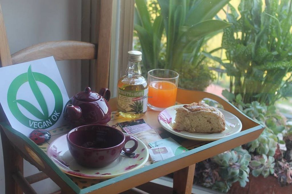 """Photo of Le Nuvole  by <a href=""""/members/profile/community"""">community</a> <br/>breakfast vegan: Tea, Herbal Tea With Agave Syrup, jams, juices and homemade cakes <br/> May 23, 2016  - <a href='/contact/abuse/image/69362/150595'>Report</a>"""