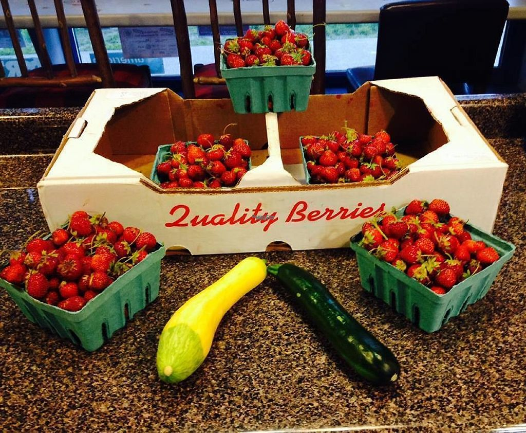 """Photo of Bike and Bean  by <a href=""""/members/profile/community"""">community</a> <br/>Strawberries and zucchini  <br/> February 20, 2017  - <a href='/contact/abuse/image/69373/228444'>Report</a>"""