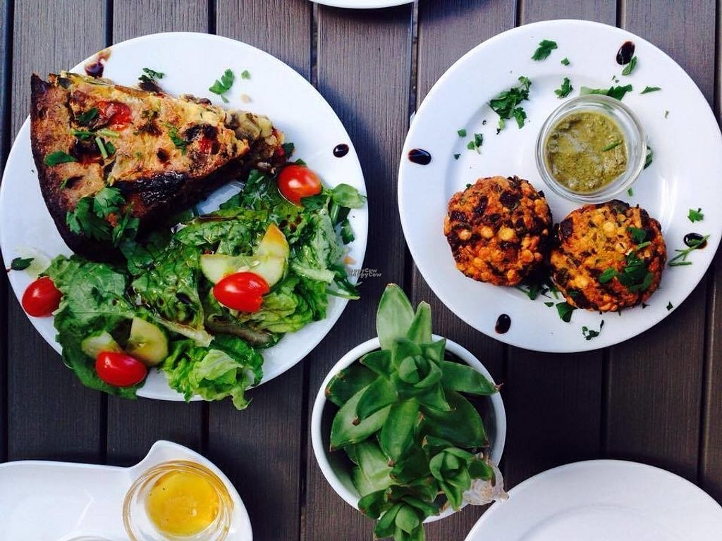 """Photo of CLOSED: Dilipasha  by <a href=""""/members/profile/Kyttiara"""">Kyttiara</a> <br/>On the left: glutenfree vegan Quiche, on the right the lentils patties with mint chutney <br/> August 30, 2016  - <a href='/contact/abuse/image/69466/172450'>Report</a>"""