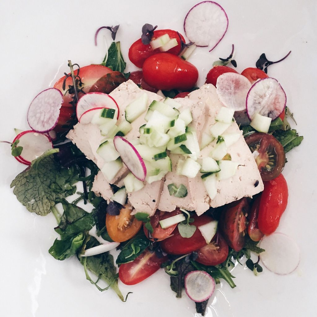 """Photo of CLOSED: Nomad Restaurant  by <a href=""""/members/profile/KeriBainborough"""">KeriBainborough</a> <br/>Smoked Tofu and Rainbow Tomato Salad  <br/> February 13, 2016  - <a href='/contact/abuse/image/69554/136020'>Report</a>"""