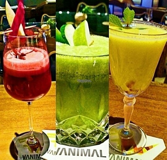 """Photo of CLOSED: Vanimal  by <a href=""""/members/profile/Apple%26Pear"""">Apple&Pear</a> <br/>home-made fresh fruit juice  <br/> October 25, 2016  - <a href='/contact/abuse/image/69594/184317'>Report</a>"""