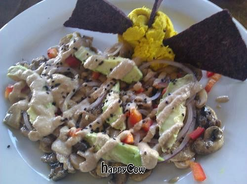 """Photo of CLOSED: RAWvolution  by <a href=""""/members/profile/eric"""">eric</a> <br/>Avocado cheese scrabble <br/> January 13, 2013  - <a href='/contact/abuse/image/6960/42848'>Report</a>"""
