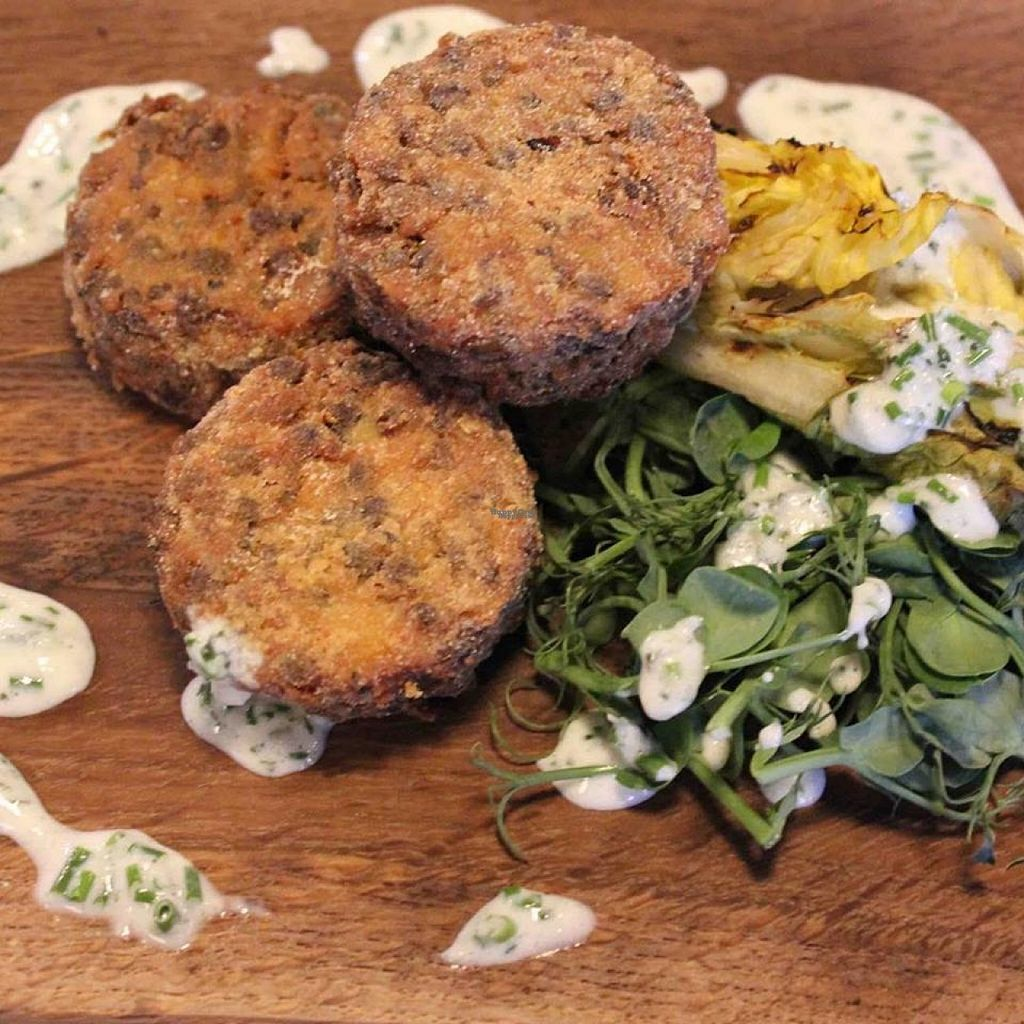 """Photo of Ambiente Tapas - Fossgate  by <a href=""""/members/profile/Meaks"""">Meaks</a> <br/>Vegan Crispy Polenta Lentil Cakes <br/> August 4, 2016  - <a href='/contact/abuse/image/69652/165398'>Report</a>"""