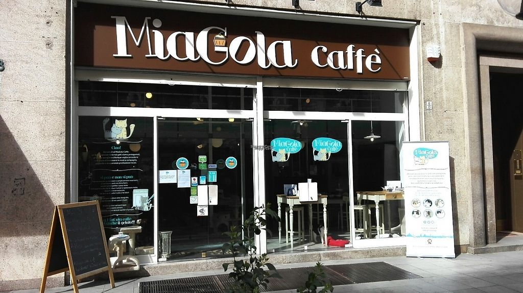 """Photo of MiaGola Caffe  by <a href=""""/members/profile/VanessaJacques"""">VanessaJacques</a> <br/>MiaGola Caffè <br/> March 23, 2017  - <a href='/contact/abuse/image/69658/239821'>Report</a>"""