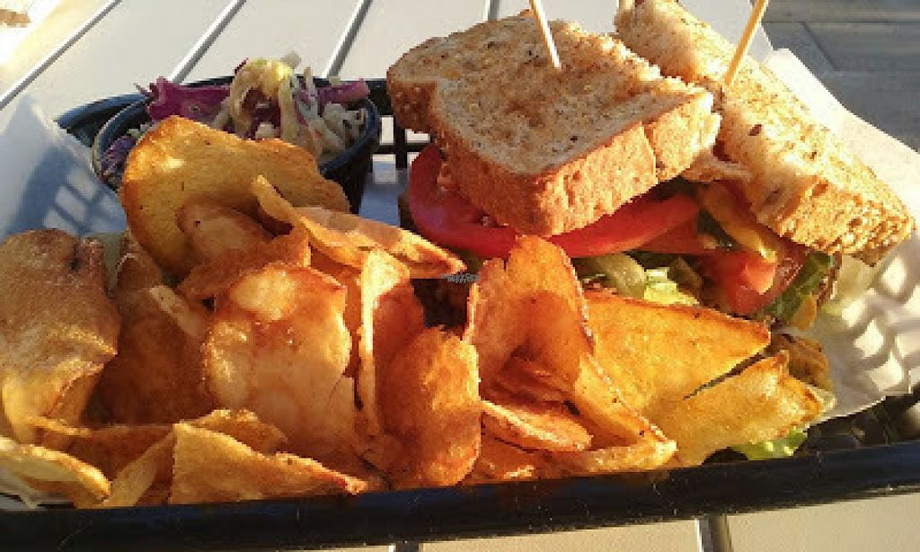 """Photo of Local Foods - The Village  by <a href=""""/members/profile/veggie_htx"""">veggie_htx</a> <br/>Falafel sandwich, cabbage slaw, housemade chips <br/> August 13, 2016  - <a href='/contact/abuse/image/69686/168411'>Report</a>"""