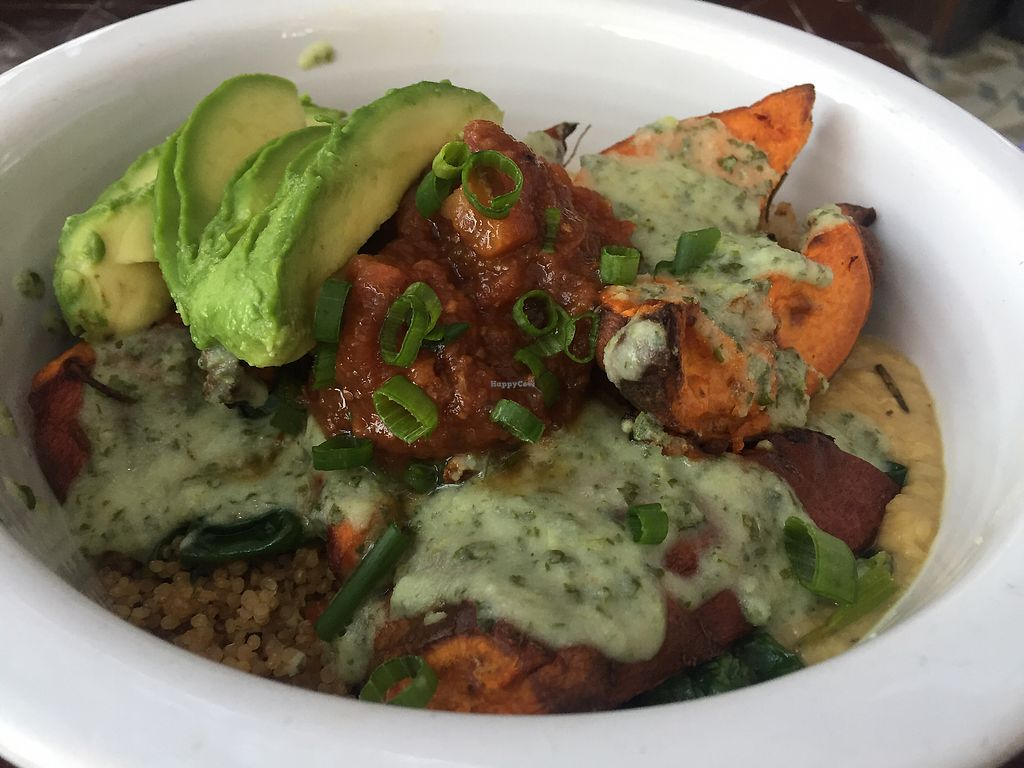 """Photo of Gratitude  by <a href=""""/members/profile/VeganCookieLover"""">VeganCookieLover</a> <br/>Indian Curry Bowl  <br/> November 5, 2017  - <a href='/contact/abuse/image/69771/322324'>Report</a>"""