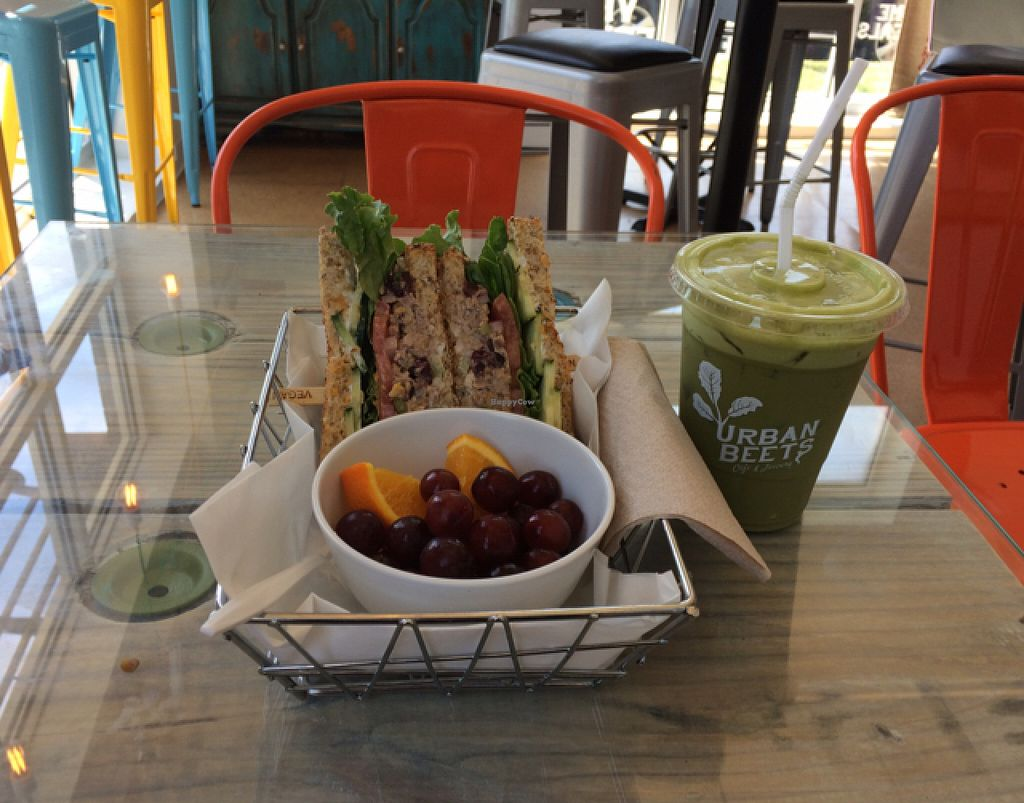"""Photo of Urban Beets Cafe & Juicery  by <a href=""""/members/profile/tauberl"""">tauberl</a> <br/>Cranberry chickpea salad sandwich with matcha latte  <br/> July 7, 2016  - <a href='/contact/abuse/image/69802/158203'>Report</a>"""
