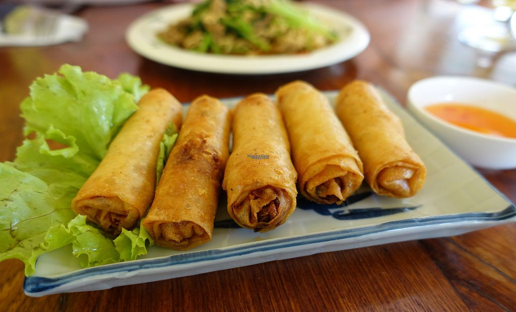 "Photo of CLOSED: Battambang Vegetarian Food  by <a href=""/members/profile/DusselDaene"">DusselDaene</a> <br/>Spring rolls <br/> November 6, 2016  - <a href='/contact/abuse/image/69813/187010'>Report</a>"