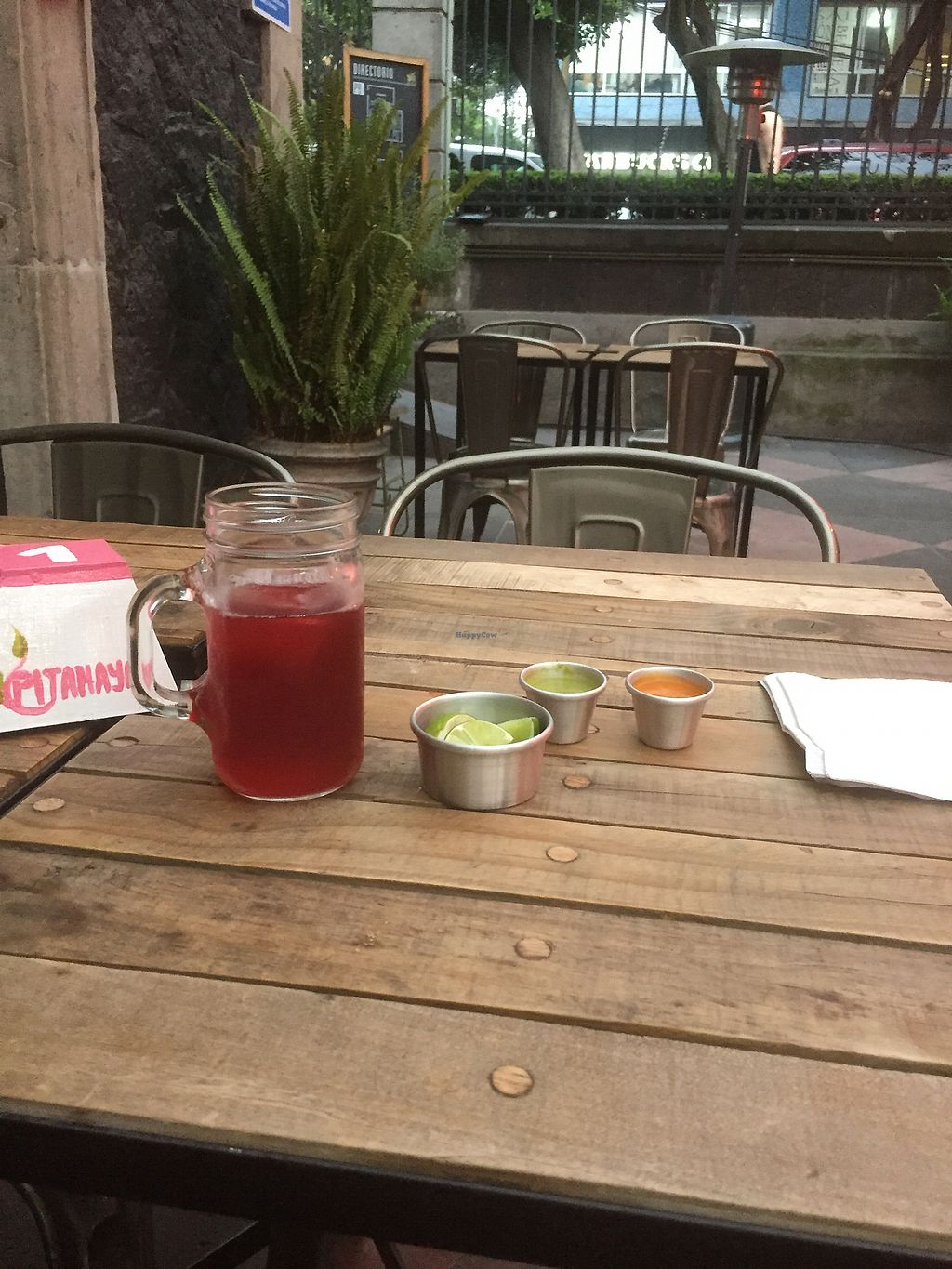 "Photo of La Pitahaya Vegana  by <a href=""/members/profile/vegannomad2"">vegannomad2</a> <br/>Drink with agave  <br/> September 15, 2017  - <a href='/contact/abuse/image/69829/304606'>Report</a>"