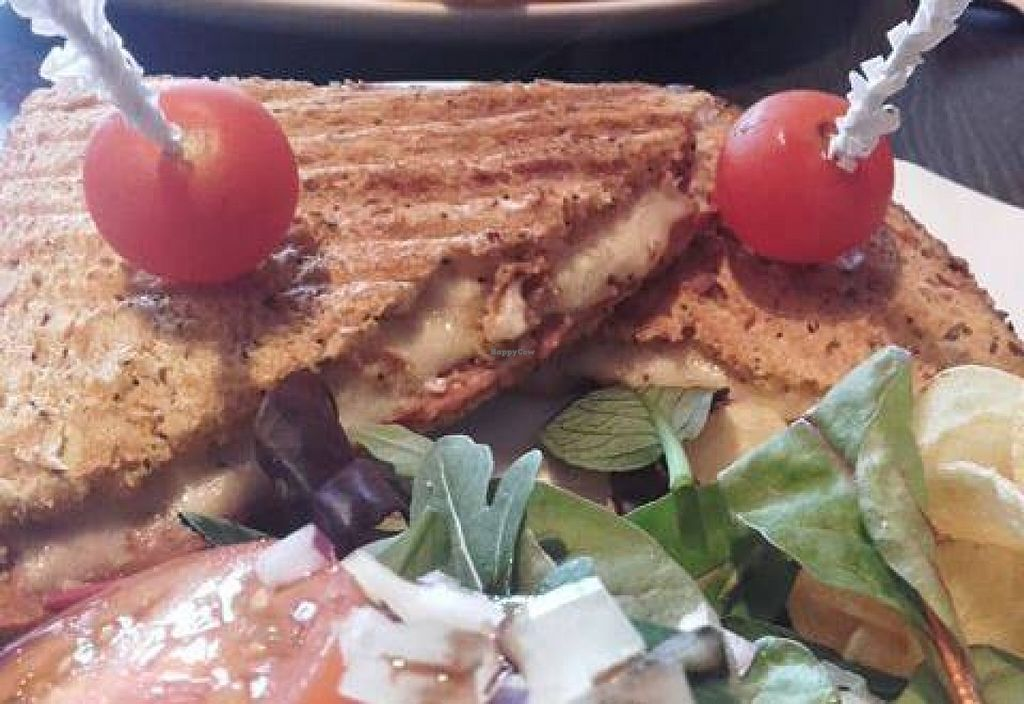 "Photo of Scarlett's Cafe  by <a href=""/members/profile/vegnbee"">vegnbee</a> <br/>Vegan bacon and cheese toasted sandwich!  <br/> February 19, 2016  - <a href='/contact/abuse/image/69830/136895'>Report</a>"