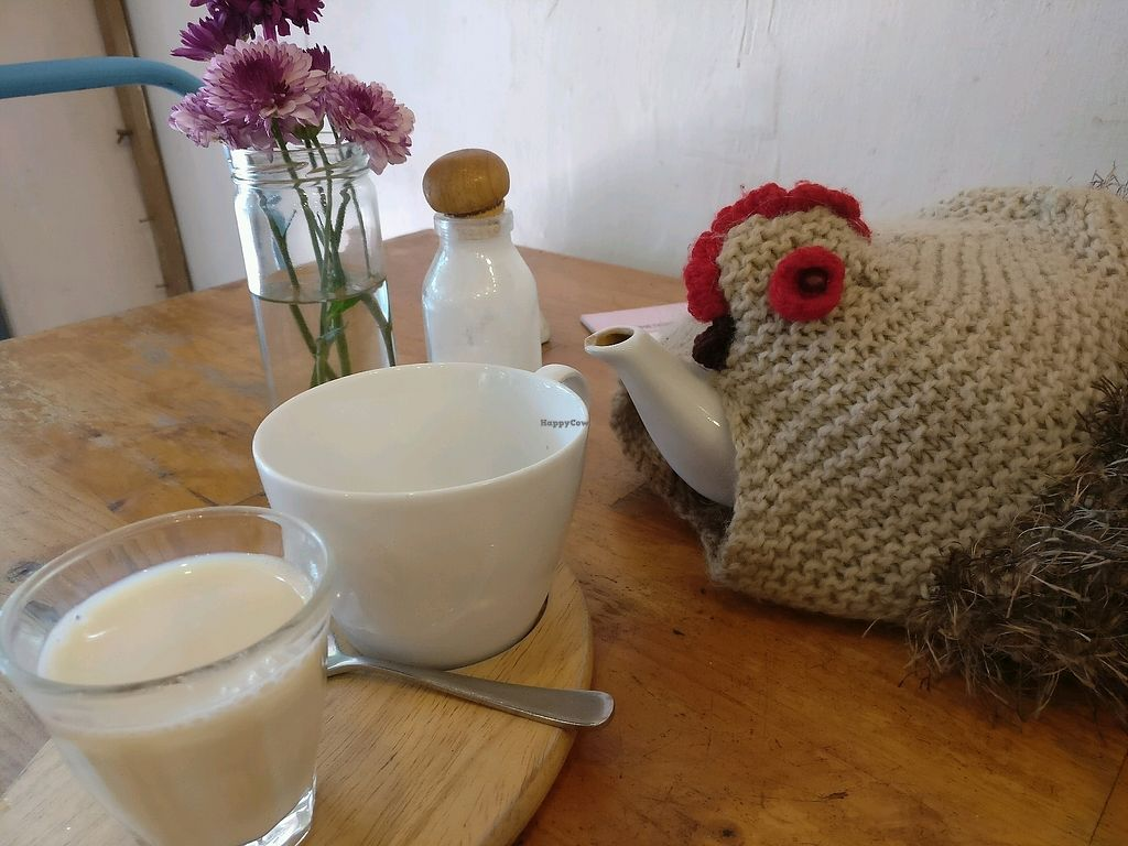 "Photo of Sister Srey Cafe  by <a href=""/members/profile/cdnvegan"">cdnvegan</a> <br/>English Breakfast Tea in a teapot! <br/> February 15, 2018  - <a href='/contact/abuse/image/69978/359600'>Report</a>"