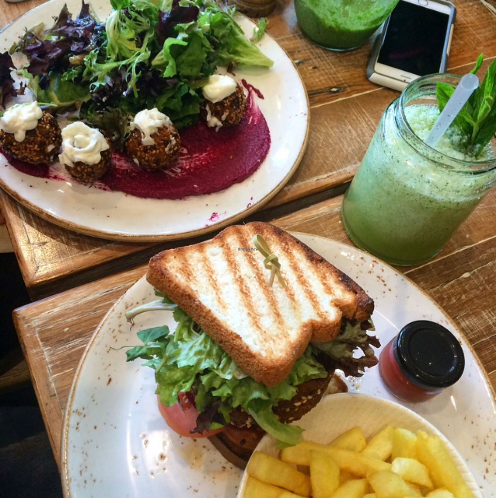 """Photo of Speedo's Cafe  by <a href=""""/members/profile/Carla.Rowe23"""">Carla.Rowe23</a> <br/>Yogi plate and GF vegan burger  <br/> July 9, 2016  - <a href='/contact/abuse/image/69993/158730'>Report</a>"""