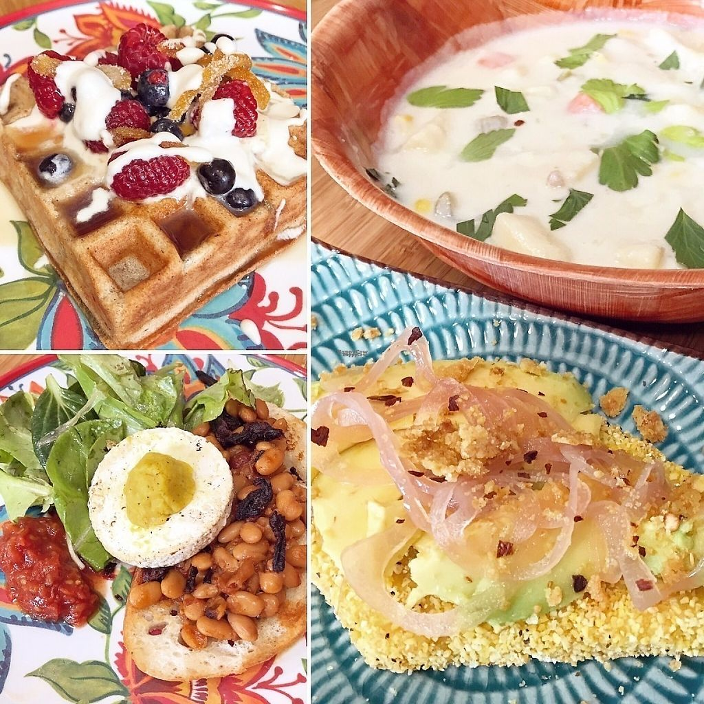 """Photo of Juicy Brew - Kaimuki  by <a href=""""/members/profile/lkong"""">lkong</a> <br/>Vegan brunch! 'Ulu chowder with avocado, pickled shallots on polenta toast; cinnamon cardamom mochiko waffle with candied orange, maple creme fraiche, and berries; baked beans and shiitake bacon on sourdough toast with tomato jam, tofu faux egg, Kolea Farm greens <br/> December 12, 2016  - <a href='/contact/abuse/image/70006/200181'>Report</a>"""