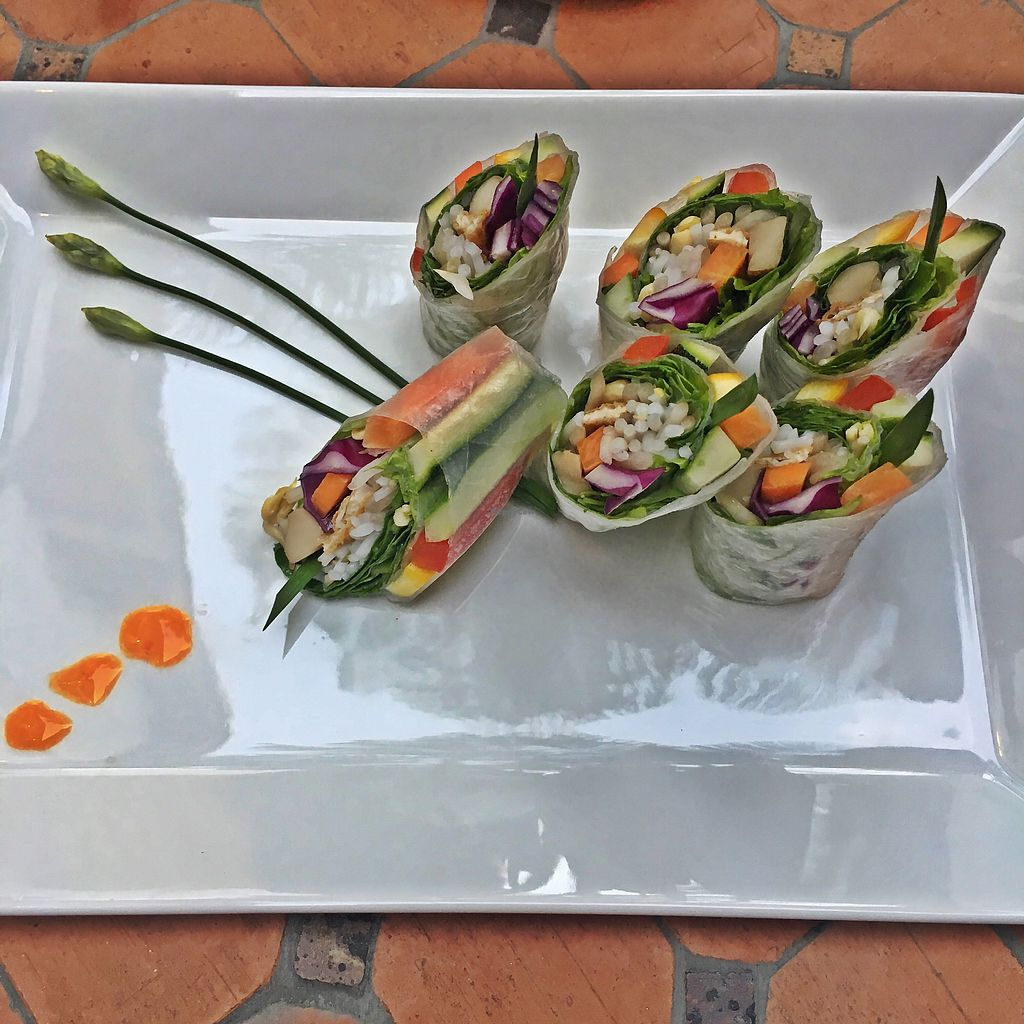 """Photo of Hum Vegetarian - District 1  by <a href=""""/members/profile/MaikaKarremans"""">MaikaKarremans</a> <br/>Spring rolls <br/> January 11, 2018  - <a href='/contact/abuse/image/70137/345501'>Report</a>"""