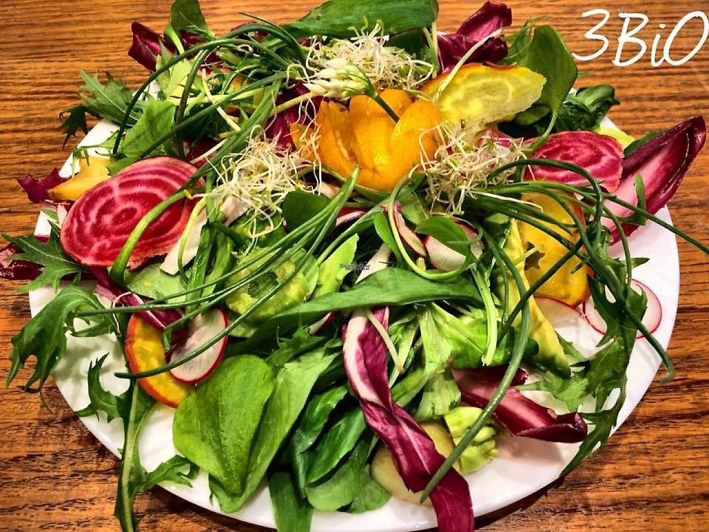 "Photo of 3 Bio  by <a href=""/members/profile/community5"">community5</a> <br/>Grand Meli-Melo spring salad <br/> April 22, 2017  - <a href='/contact/abuse/image/70151/251255'>Report</a>"