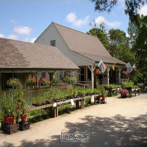 "Photo of Coonamessett Farm Cafe  by <a href=""/members/profile/will-travel-for-food"">will-travel-for-food</a> <br/>Outside <br/> October 22, 2009  - <a href='/contact/abuse/image/7016/2832'>Report</a>"