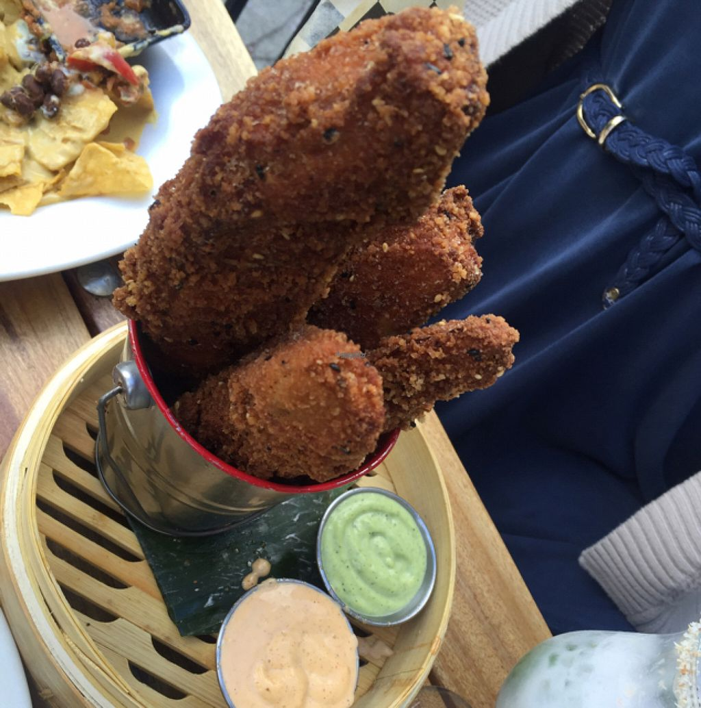 "Photo of No Bones Beach Club  by <a href=""/members/profile/Clanreed"">Clanreed</a> <br/>Eggplant fries <br/> August 8, 2016  - <a href='/contact/abuse/image/70318/166789'>Report</a>"