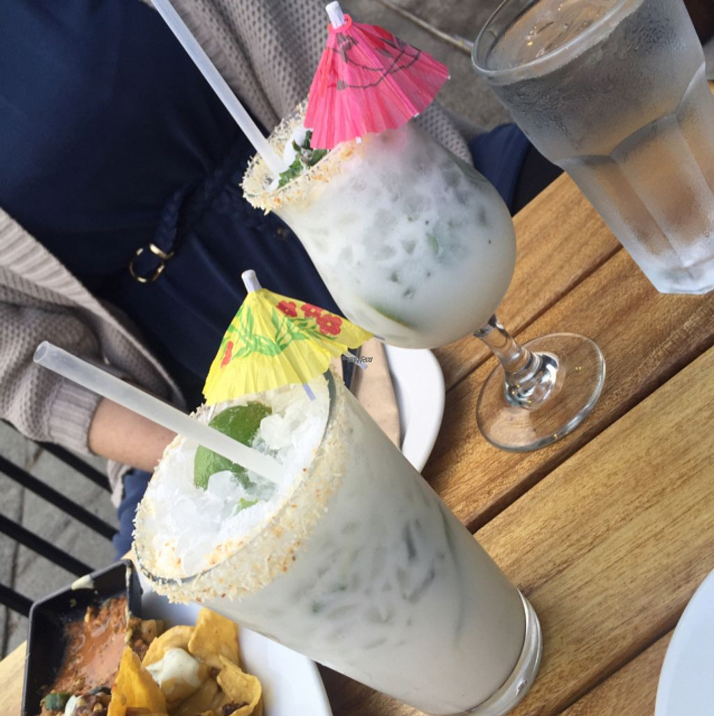 "Photo of No Bones Beach Club  by <a href=""/members/profile/Clanreed"">Clanreed</a> <br/>coconut mojito  <br/> August 8, 2016  - <a href='/contact/abuse/image/70318/166790'>Report</a>"