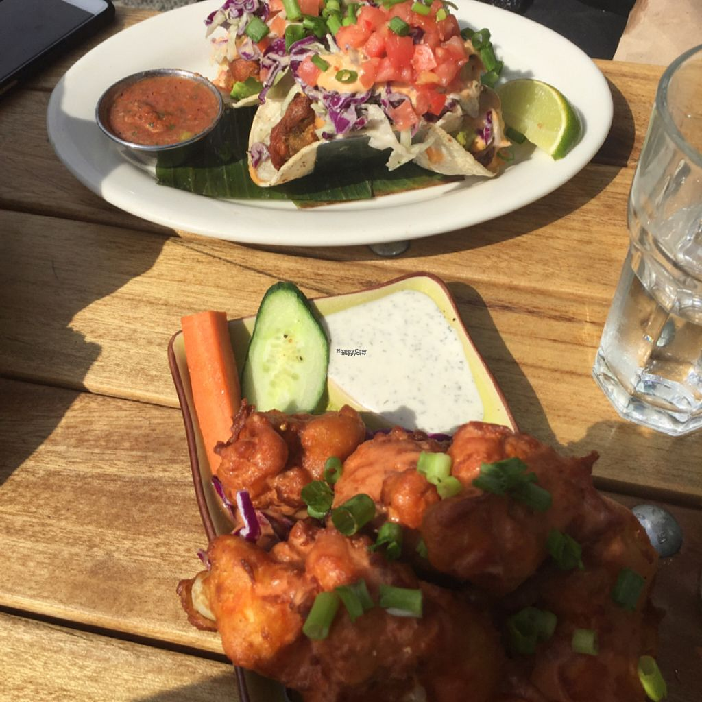"Photo of No Bones Beach Club  by <a href=""/members/profile/TracyV600"">TracyV600</a> <br/>buffalo cauliflower wings and the fried avocado tacos. yum! <br/> August 22, 2016  - <a href='/contact/abuse/image/70318/170815'>Report</a>"