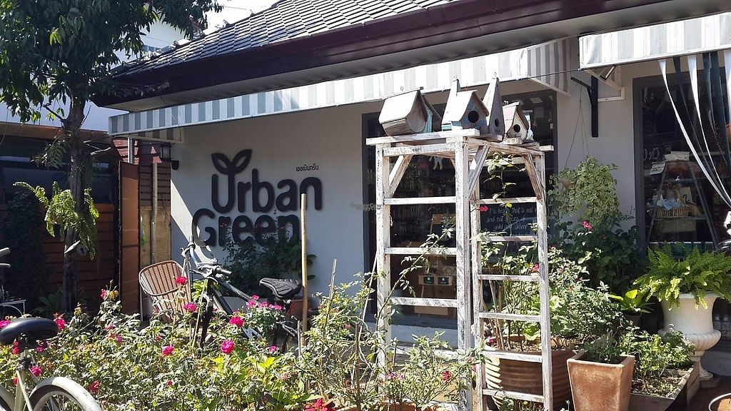 """Photo of Urban Green  by <a href=""""/members/profile/lotus.light"""">lotus.light</a> <br/>Exterior view <br/> March 20, 2017  - <a href='/contact/abuse/image/70348/238730'>Report</a>"""