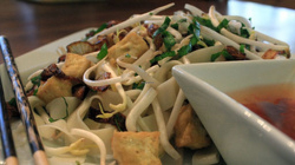 """Photo of Vu Noodles  by <a href=""""/members/profile/JasonKessler"""">JasonKessler</a> <br/>Tofu and Caramelized Onions <br/> April 7, 2016  - <a href='/contact/abuse/image/70376/143183'>Report</a>"""