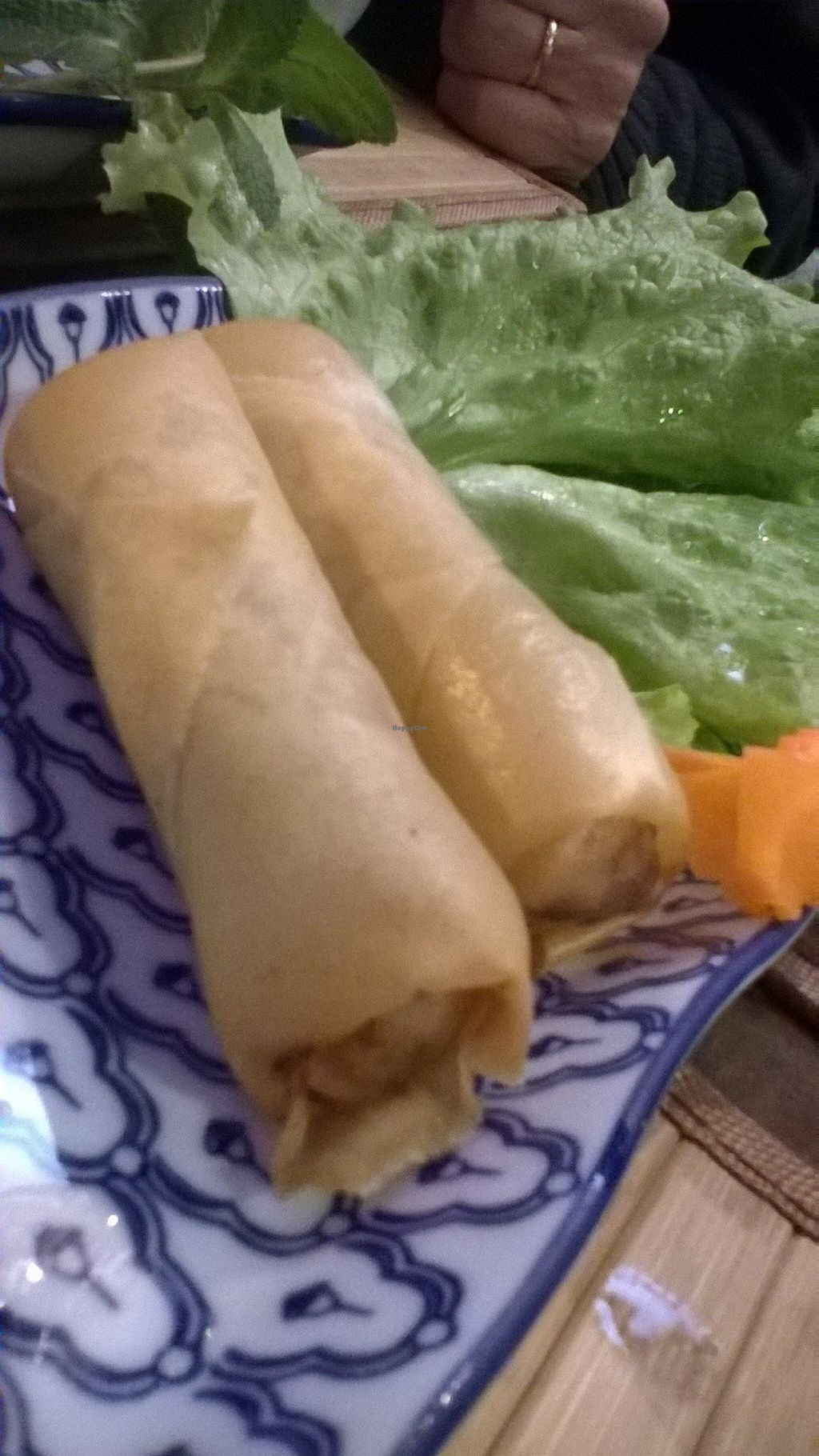 "Photo of Chian Rai Mai  by <a href=""/members/profile/Sylvane"">Sylvane</a> <br/>Vegetables rolls <br/> March 4, 2016  - <a href='/contact/abuse/image/70432/138702'>Report</a>"