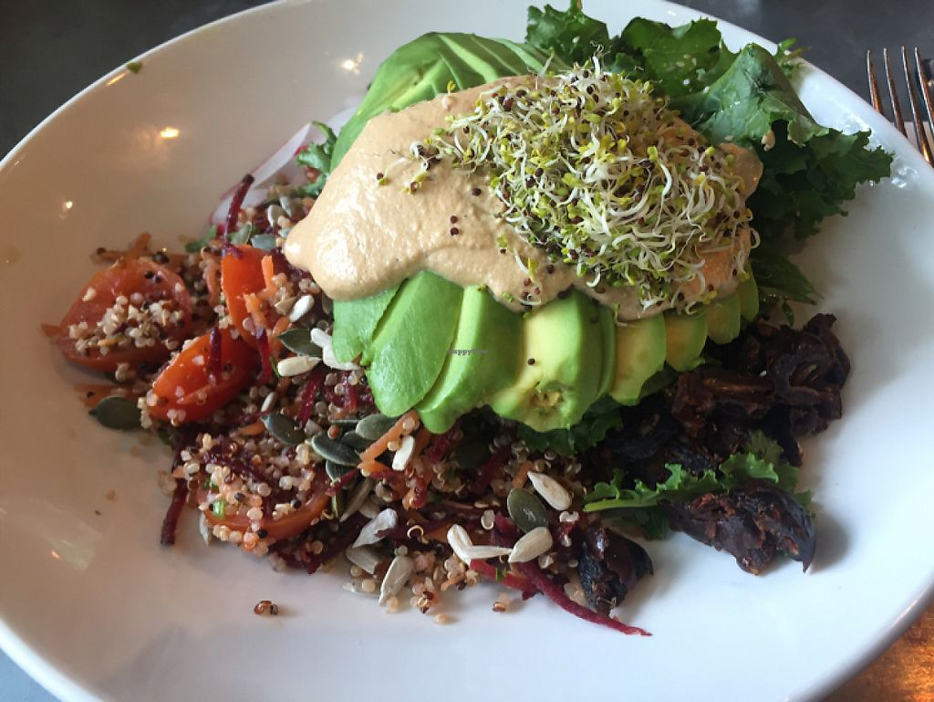 "Photo of Mildreds - Kings Cross  by <a href=""/members/profile/Bea_lc"">Bea_lc</a> <br/>yummy soul bowl <br/> June 4, 2017  - <a href='/contact/abuse/image/70439/265798'>Report</a>"