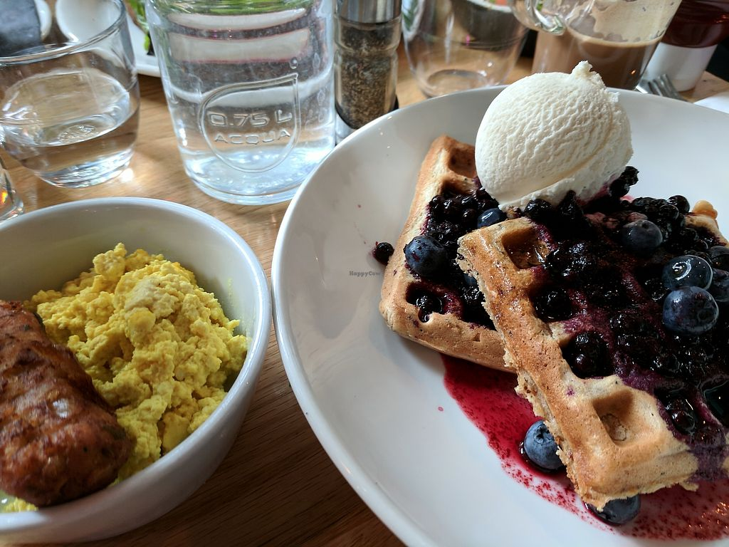 "Photo of Mildreds - Kings Cross  by <a href=""/members/profile/callyisprobablyacat"">callyisprobablyacat</a> <br/>The vegan quinoa oat and blueberry waffles with maple syrup and ice cream, ""sausage,"" and tofu scramble <br/> September 3, 2017  - <a href='/contact/abuse/image/70439/300457'>Report</a>"