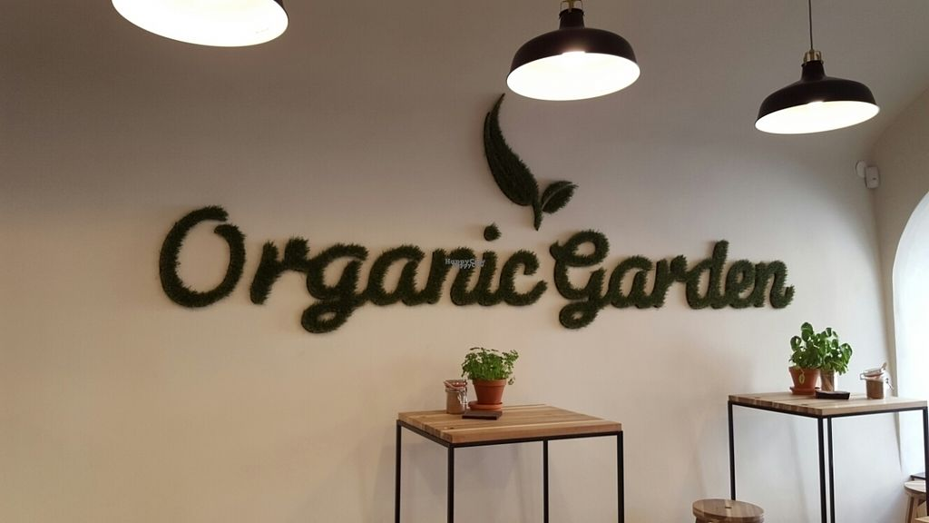 """Photo of CLOSED: Organic Garden - Pod Hribom  by <a href=""""/members/profile/Traveller_for_liphe"""">Traveller_for_liphe</a> <br/>wall <br/> September 22, 2016  - <a href='/contact/abuse/image/70458/177305'>Report</a>"""