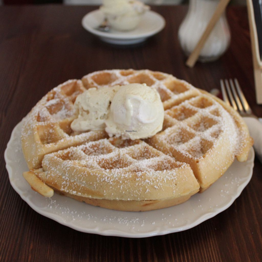 """Photo of Cafe Zuckerl  by <a href=""""/members/profile/Strawberrymilkshake"""">Strawberrymilkshake</a> <br/>vegan waffle with vegan icecream <br/> June 21, 2016  - <a href='/contact/abuse/image/70592/155268'>Report</a>"""