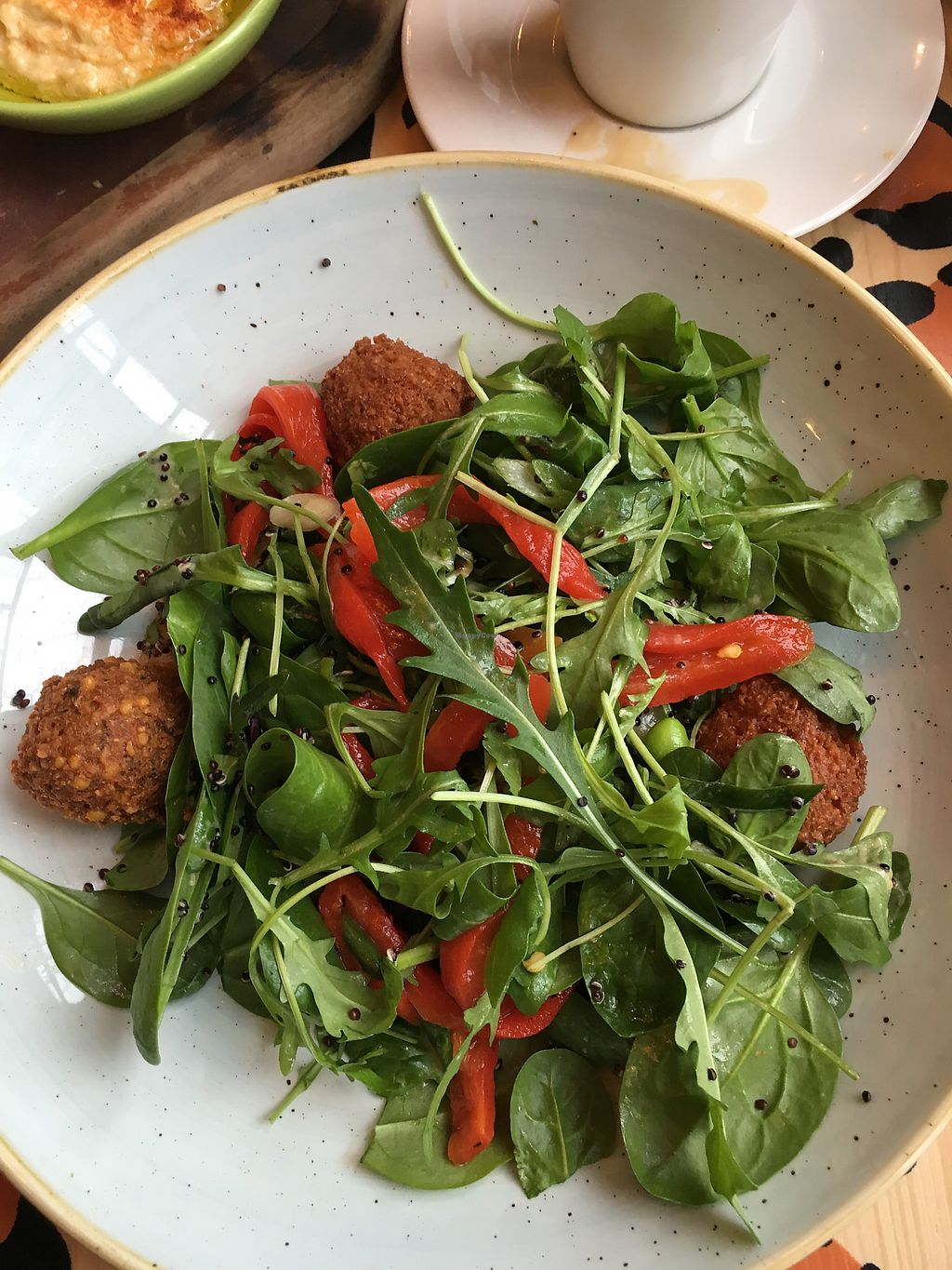 "Photo of Kino Lounge  by <a href=""/members/profile/TheNettlePatch"">TheNettlePatch</a> <br/>Falafel Salad with Roasted Peppers <br/> December 26, 2017  - <a href='/contact/abuse/image/70603/339093'>Report</a>"
