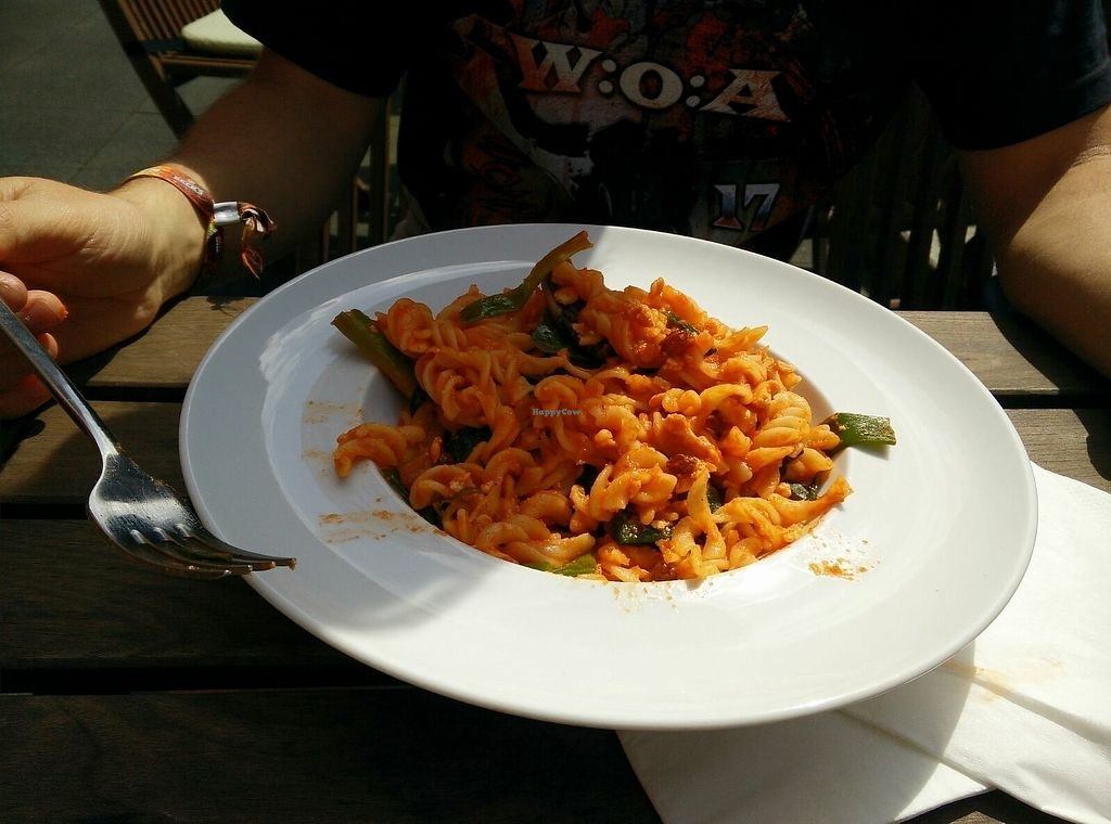 "Photo of ElbFaire  by <a href=""/members/profile/DanLights"">DanLights</a> <br/>Pasta with raisin sauce <br/> August 8, 2017  - <a href='/contact/abuse/image/70610/290395'>Report</a>"