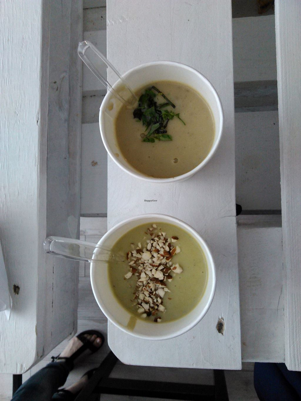 """Photo of Suppa Bar  by <a href=""""/members/profile/alexandra_vegan"""">alexandra_vegan</a> <br/>cream soups <br/> April 4, 2016  - <a href='/contact/abuse/image/70631/142730'>Report</a>"""