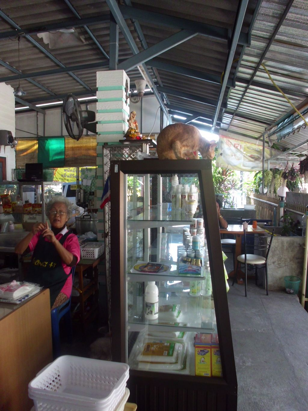"Photo of Vegetarian Eatery & Shop  by <a href=""/members/profile/Maros"">Maros</a> <br/>Typical staff in Thai vegan restaurants - a nice lady and a cat. :) <br/> March 8, 2016  - <a href='/contact/abuse/image/70635/139349'>Report</a>"