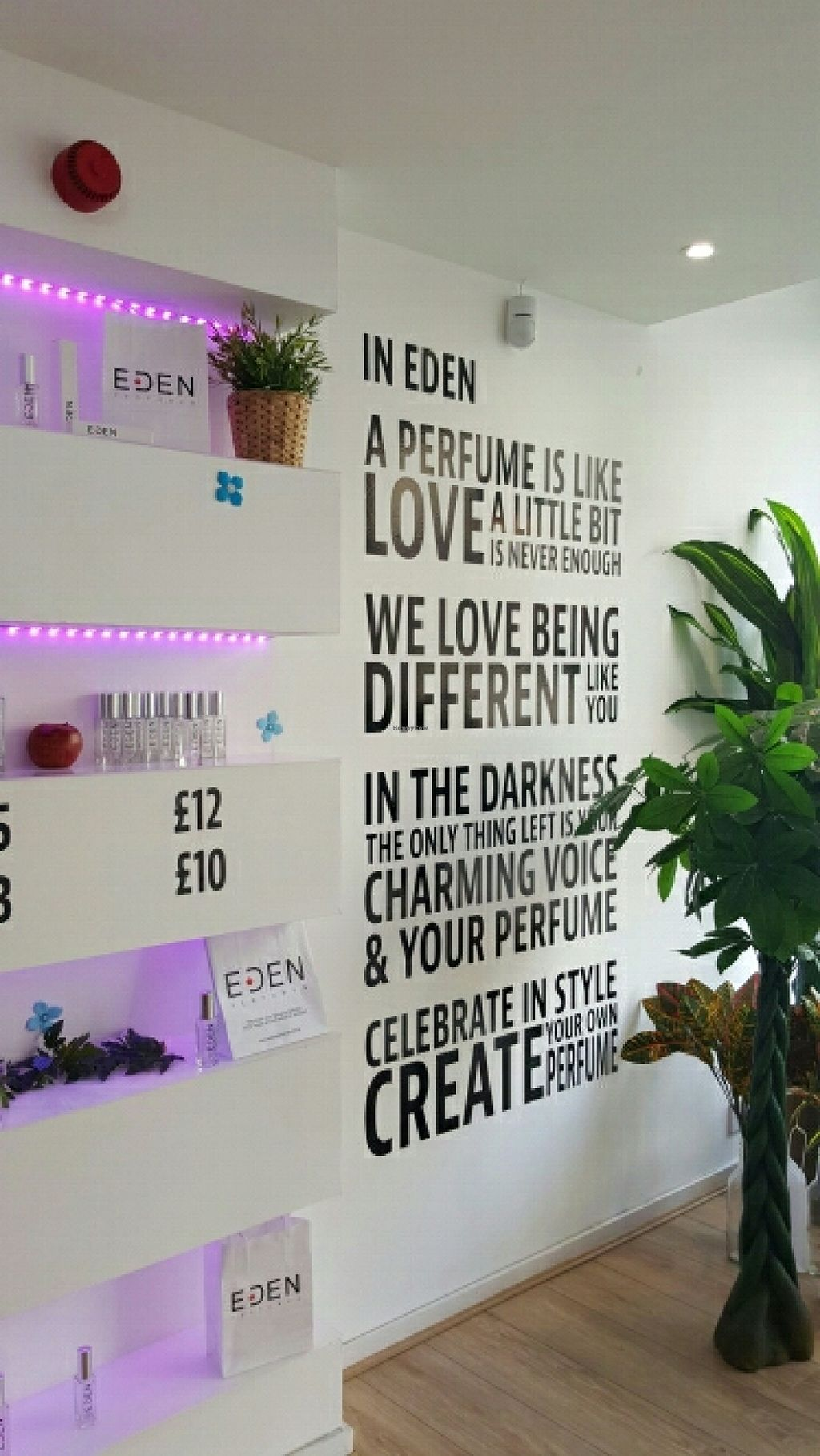 """Photo of Eden Perfumes - Western Rd  by <a href=""""/members/profile/Clare"""">Clare</a> <br/>Thoughtful  <br/> March 12, 2016  - <a href='/contact/abuse/image/70807/139740'>Report</a>"""