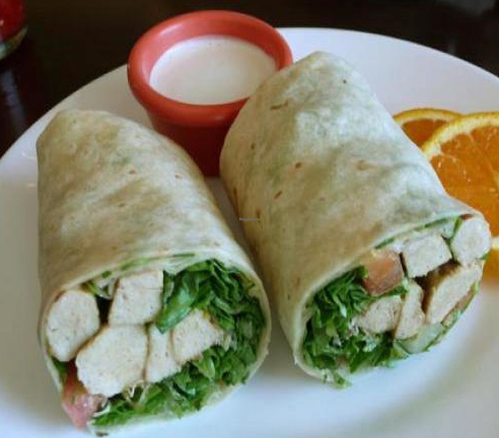 "Photo of Green Leaves  by <a href=""/members/profile/quarrygirl"">quarrygirl</a> <br/>Seitan wrap <br/> December 26, 2011  - <a href='/contact/abuse/image/7084/189474'>Report</a>"