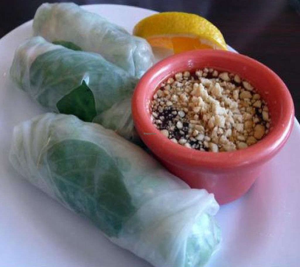 "Photo of Green Leaves  by <a href=""/members/profile/quarrygirl"">quarrygirl</a> <br/>Spring rolls: fresh vegetables wrapped in noodle skin with house sauce <br/> December 26, 2011  - <a href='/contact/abuse/image/7084/189475'>Report</a>"