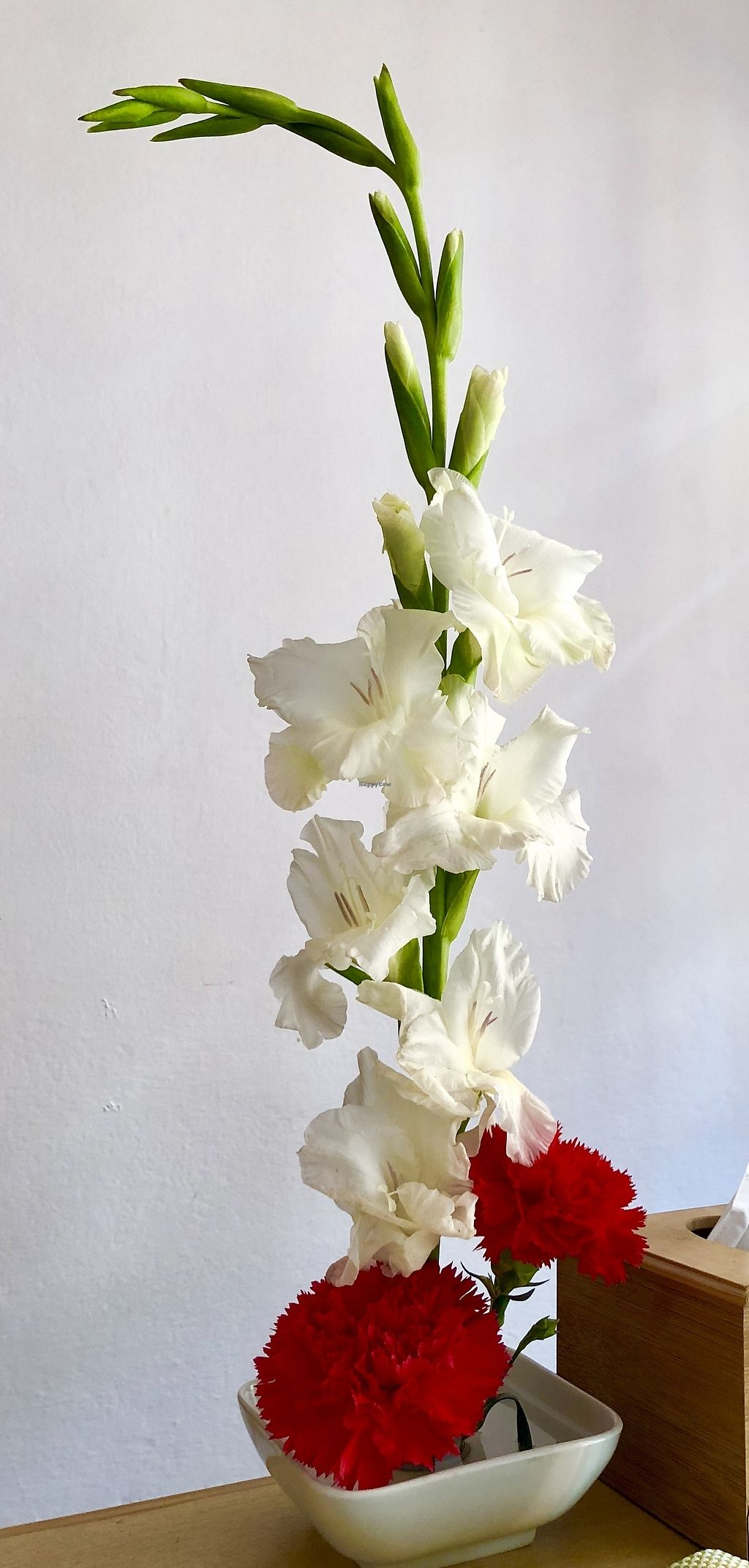 """Photo of Bliss Pure Foods  by <a href=""""/members/profile/KathrynSunantha"""">KathrynSunantha</a> <br/>Bliss flowers arrangement  <br/> March 5, 2018  - <a href='/contact/abuse/image/70969/367055'>Report</a>"""