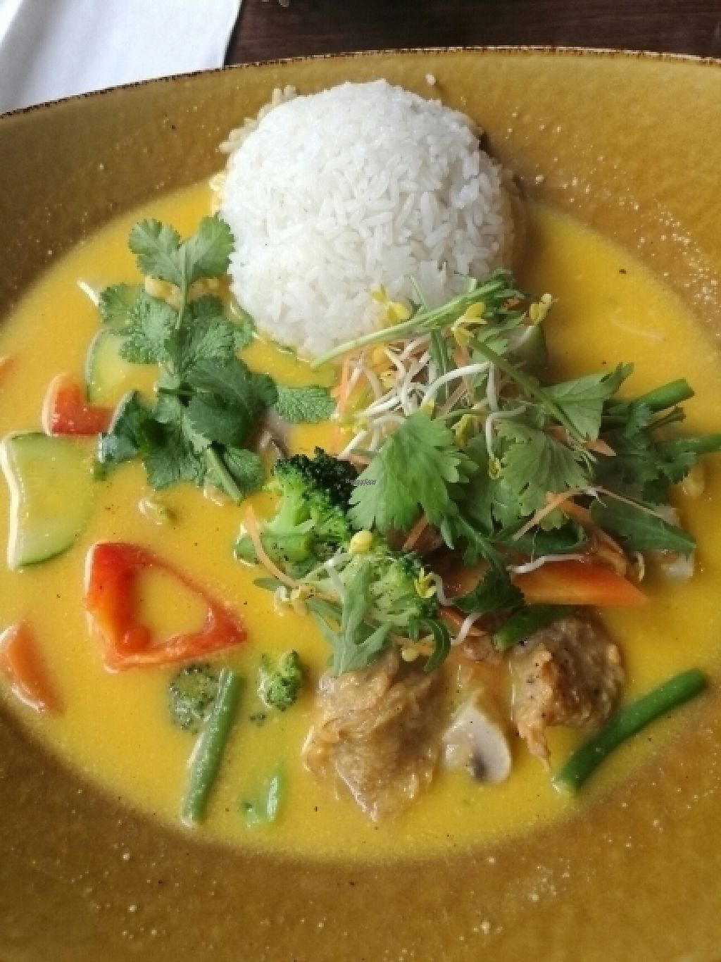 "Photo of Rou Vegetarian  by <a href=""/members/profile/greentea35"">greentea35</a> <br/>mock chicken in mango sauce with coconut milk <br/> April 22, 2017  - <a href='/contact/abuse/image/71031/251108'>Report</a>"