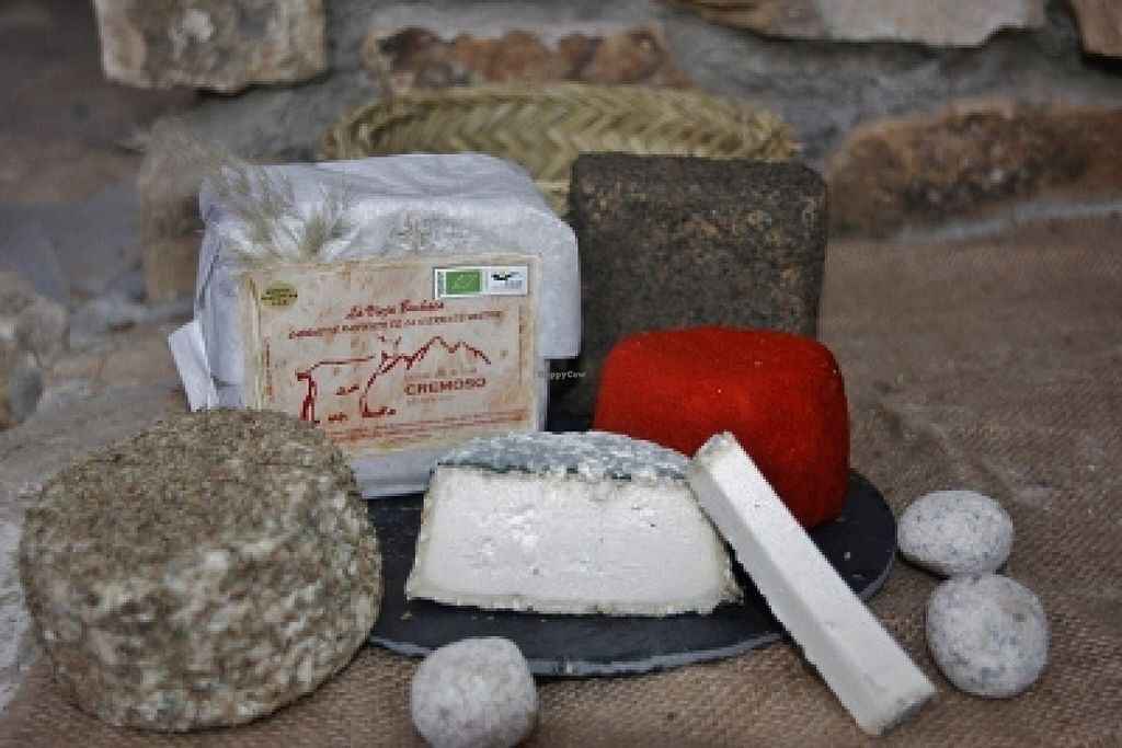 Photo of La Talega Andalucia Slow Food  by La Talega Slow Food <br/>organic cheese <br/> April 9, 2016  - <a href='/contact/abuse/image/71173/143653'>Report</a>