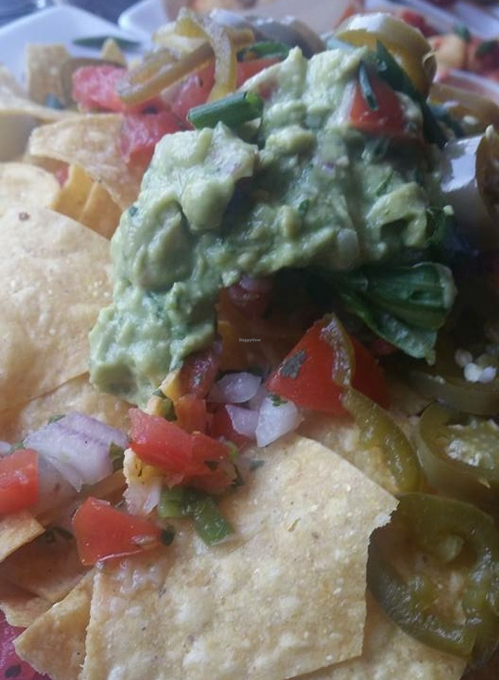 "Photo of Venti's Cafe and Taphouse  by <a href=""/members/profile/Arthousebill"">Arthousebill</a> <br/>Vegan nachos <br/> April 2, 2016  - <a href='/contact/abuse/image/71197/222545'>Report</a>"