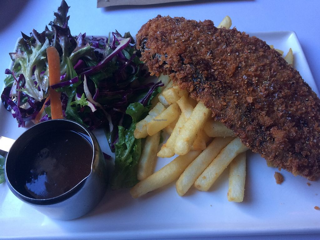 """Photo of The Austral Hotel  by <a href=""""/members/profile/FastFood4Ever"""">FastFood4Ever</a> <br/>Eggplant Schnitzel with Gravy <br/> August 12, 2017  - <a href='/contact/abuse/image/71239/292068'>Report</a>"""