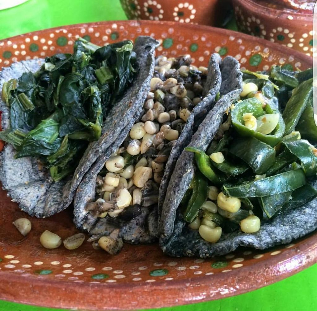 "Photo of Yeikame  by <a href=""/members/profile/AlejandroGutierrez"">AlejandroGutierrez</a> <br/>blue corn tortilla tacos